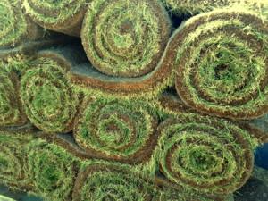 grassrolls